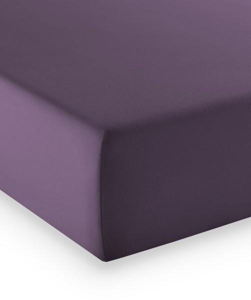 Premium Jersey fleuresse comfort Spannlaken lavendel