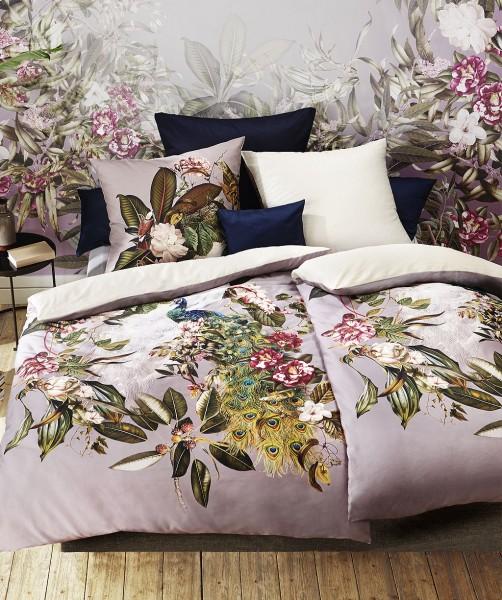 Prunkvolle Pfau Bettwäsche mit uni Wende von fleuresse bed art in Rose 135x200